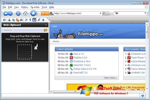 Screenshot Flock para Windows 7