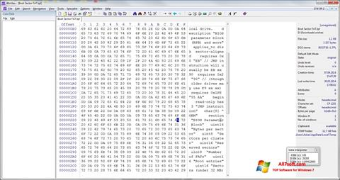 Screenshot WinHex para Windows 7