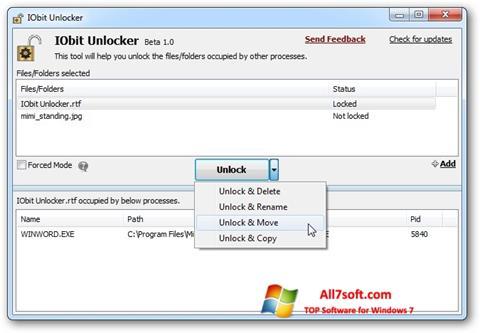 Screenshot IObit Unlocker para Windows 7