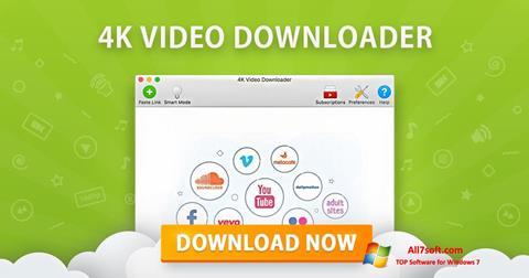 Screenshot 4K Video Downloader para Windows 7